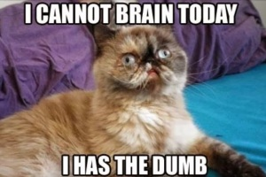 Can't Brain